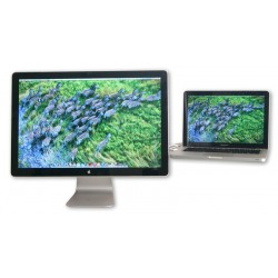 "Apple LED Cinema Display 24"" A1267"